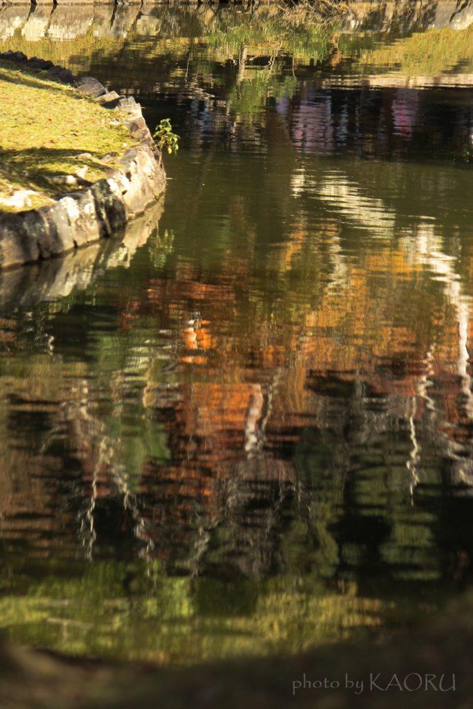 奈良 東大寺 鏡池 映り込み