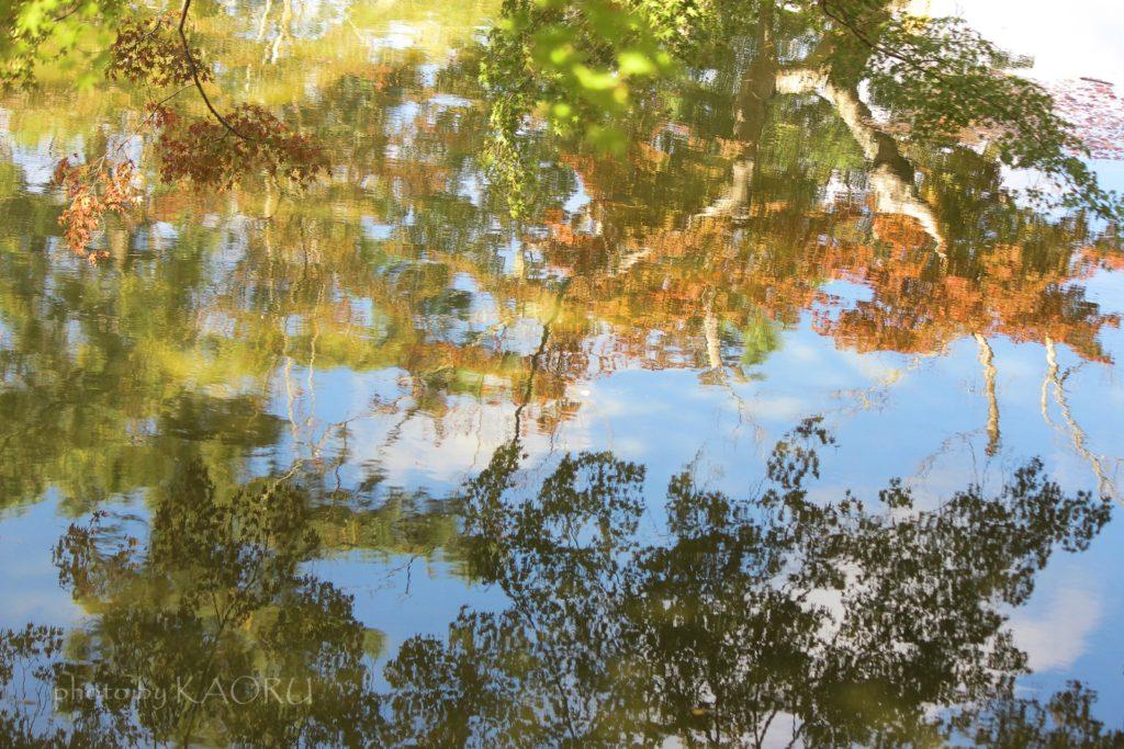 奈良 東大寺 鏡池 紅葉