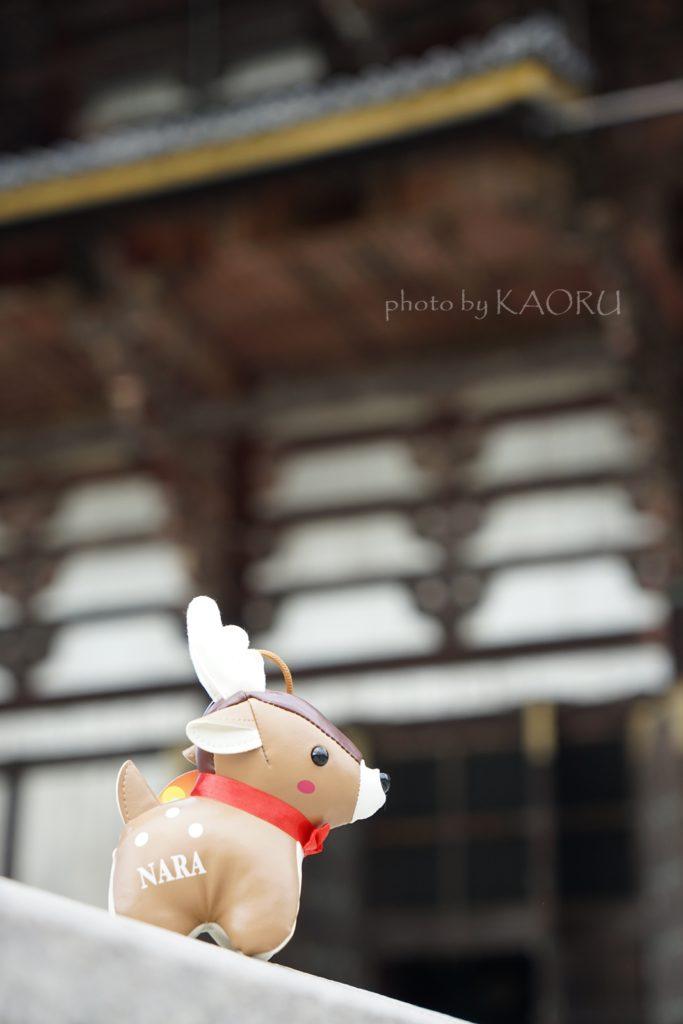 ぬい撮り 奈良