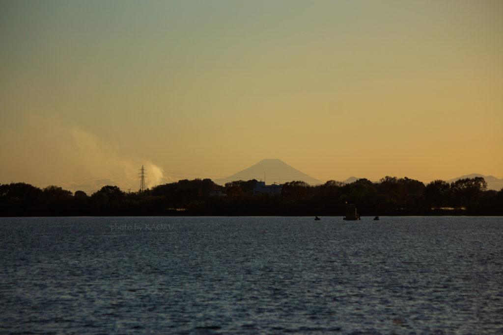 渡良瀬遊水地 富士山