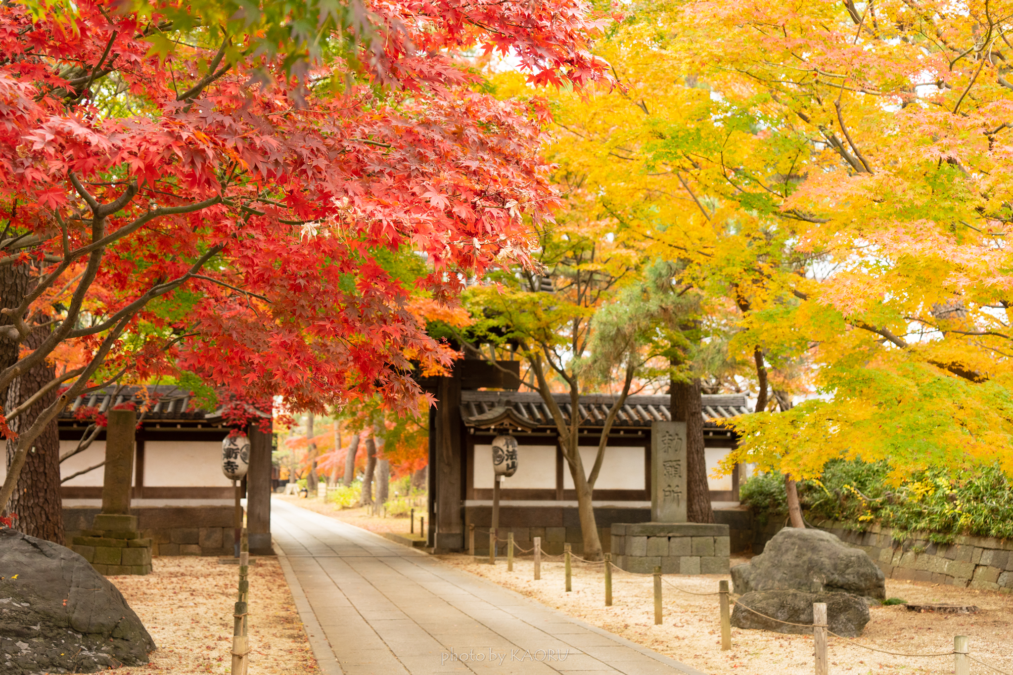 東漸寺 総門