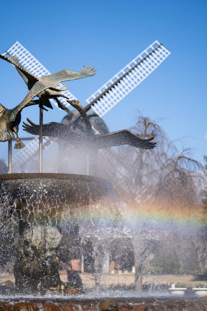 船橋アンデルセン公園 虹 噴水